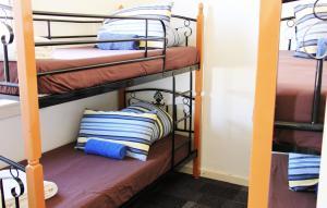 Blue Mountains Backpacker Hostel, Hostelek  Katoomba - big - 24