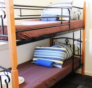Blue Mountains Backpacker Hostel, Hostely  Katoomba - big - 22