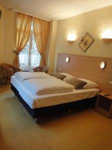 Parkhotel Villa des Effats Vielsalm, Hotels  Vielsalm - big - 9