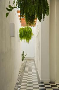 La Casa Del Piano Hotel Boutique by Xarm Hotels, Hotely  Santa Marta - big - 48