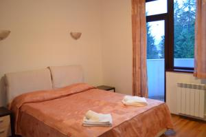 Persey Flora Apartments, Residence  Borovets - big - 42