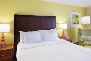 Hilton Garden Inn Orange Beach, Отели  Галф-Шорс - big - 15