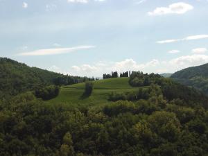 Villa Podere Quartarola, Farmy  Modigliana - big - 26