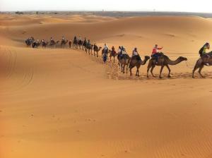 Marhaba Camp, Camel & Sandboarding, Luxury tents  Merzouga - big - 48
