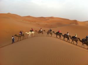Marhaba Camp, Camel & Sandboarding, Luxury tents  Merzouga - big - 41