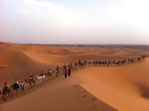 Marhaba Camp, Camel & Sandboarding, Luxury tents  Merzouga - big - 59