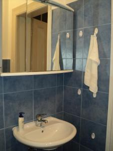 Apartment Horvat, Appartamenti  Zagabria - big - 15