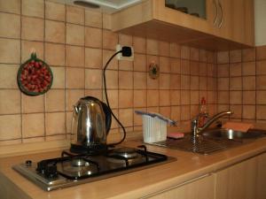Apartment Horvat, Appartamenti  Zagabria - big - 19