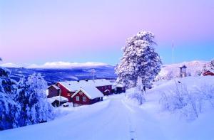 Ruten Fjellstue, Guest houses  Espedalen - big - 34