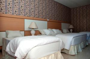 Hotel Green Hill, Hotel  Juiz de Fora - big - 14
