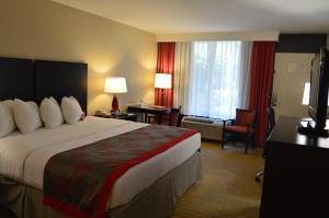 Ramada by Wyndham Naples, Hotely  Naples - big - 13