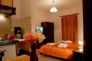 Artemis Apartments, Apartmánové hotely  Konitsa - big - 19