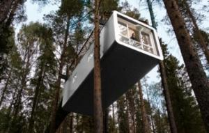 Treehotel (9 of 47)