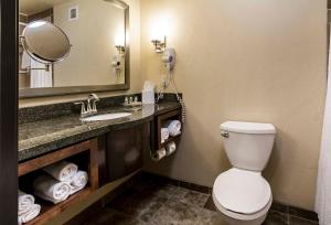 Holiday Inn Hotel & Suites Durango Central, Hotel  Durango - big - 5