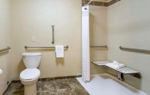 Holiday Inn Hotel & Suites Durango Central, Hotely  Durango - big - 4