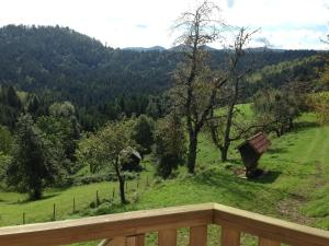 Farm Stay Oblak, Farmy  Rigelj pri Ortneku - big - 20