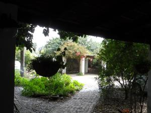 Saint du Barrys, Penziony  Clanwilliam - big - 13