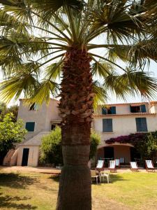 Hotel U Dragulinu, Hotels  Favone - big - 44