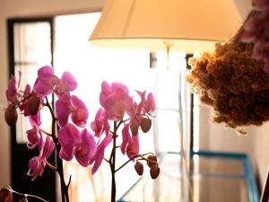 Hotel U Dragulinu, Отели  Фавон - big - 12