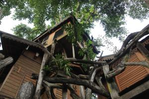 Pai Treehouse, Resort  Pai - big - 32