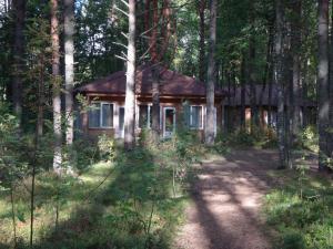 Hotel complex Derevnya Aleksandrovka, Holiday parks  Konchezero - big - 2