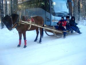 Hotel complex Derevnya Aleksandrovka, Holiday parks  Konchezero - big - 43