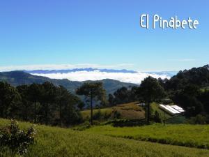 El Pinabete Finca & Cabañas, Hostince  La Granadilla - big - 29