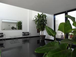 Apartamentos Diagonal, Appartamenti  La Plata - big - 3
