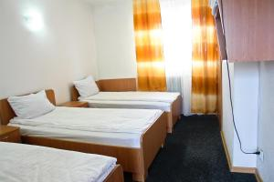 Motel Dacia, Motels  Sebeş - big - 5