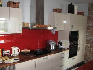 Apartments Klinovec, Apartmány  Loučná pod Klínovcem - big - 36