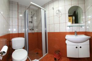 Pensiunea Jiul Central, Гостевые дома  Тыргу-Жиу - big - 7