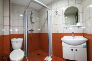 Pensiunea Jiul Central, Гостевые дома  Тыргу-Жиу - big - 14