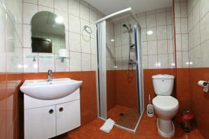Pensiunea Jiul Central, Vendégházak  Zsilvásárhely - big - 2