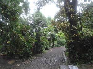 Flor de Mayo Airport Nature Reserve, Guest houses  Alajuela - big - 32
