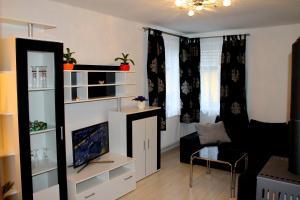 Haus Veni, Appartamenti  Bad Grund - big - 12