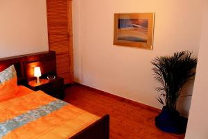 Haus Veni, Appartamenti  Bad Grund - big - 45