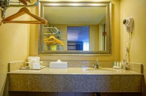 Quality Inn Phoenix Airport, Hotely  Phoenix - big - 4