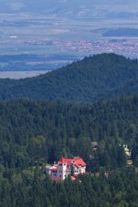 House of Dracula Hotel, Hotely  Poiana Brasov - big - 71