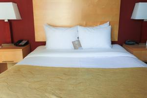 Люкс с 1 спальней с кроватью размера «queen-size» - Вид на город