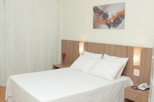 Premier Parc Hotel, Hotely  Juiz de Fora - big - 18