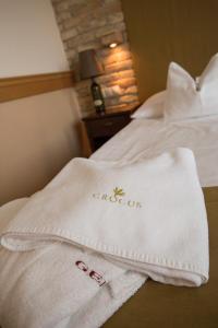 Crocus Gere Bor Hotel Resort & Wine Spa, Hotel  Villány - big - 16