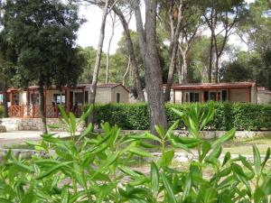 Camping Park Soline, Prázdninové areály  Biograd na Moru - big - 6