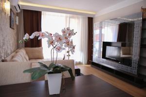 Harmony Palace, Aparthotely  Slunečné pobřeží - big - 14