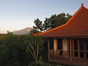 Bangsring Breeze, Hotel  Banyuwangi - big - 13