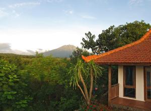 Bangsring Breeze, Hotel  Banyuwangi - big - 3