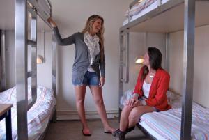 ドミトリールーム 男女共用 ベッド計10台以上のベッド1台