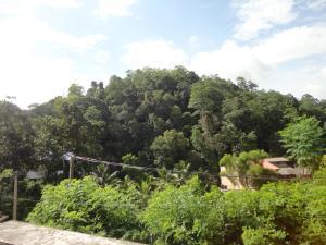 Sherenes Homestay, Alloggi in famiglia  Kandy - big - 24