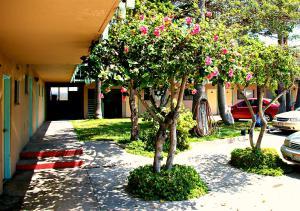 Motel Presidente, Отели  Энсенада - big - 13