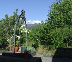 Borgo Dell'Etna, Country houses  Sant'Alfio - big - 21