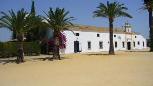Hacienda La Indiana, Vendégházak  Los Palacios y Villafranca - big - 18